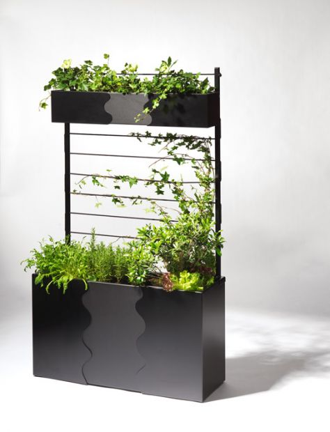 Barbed Loves: Urban Planter