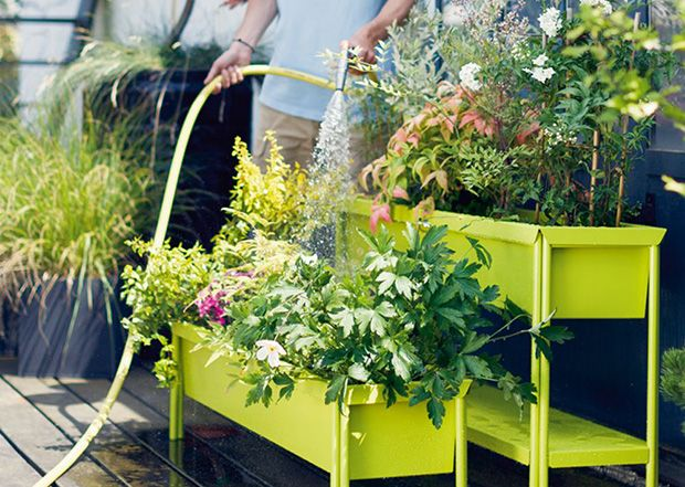 Heading abroad? Maintain your garden while on holiday
