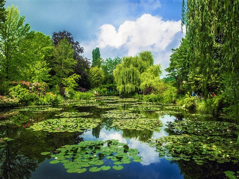 Water lilly pond in Monet's Giverny garden